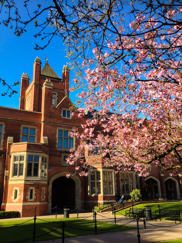 The Quad in spring